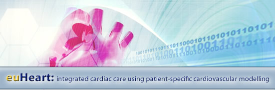 euHeart - integrated cardiac care using patient-specific cardiovascular modeling